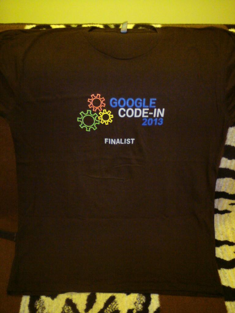 Koszulka GCI 2013